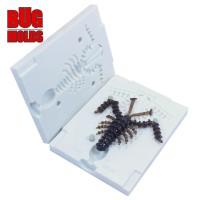 Fishing soft bait mold Mosya 1,5 inch model ID B18 from Bugmolds